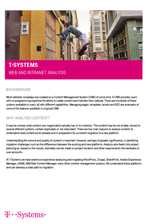T-Systems – Web and Intranet Systems Analysis