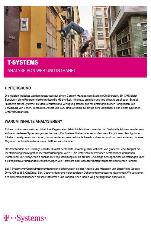 Analyse von Web und Intranet _DE